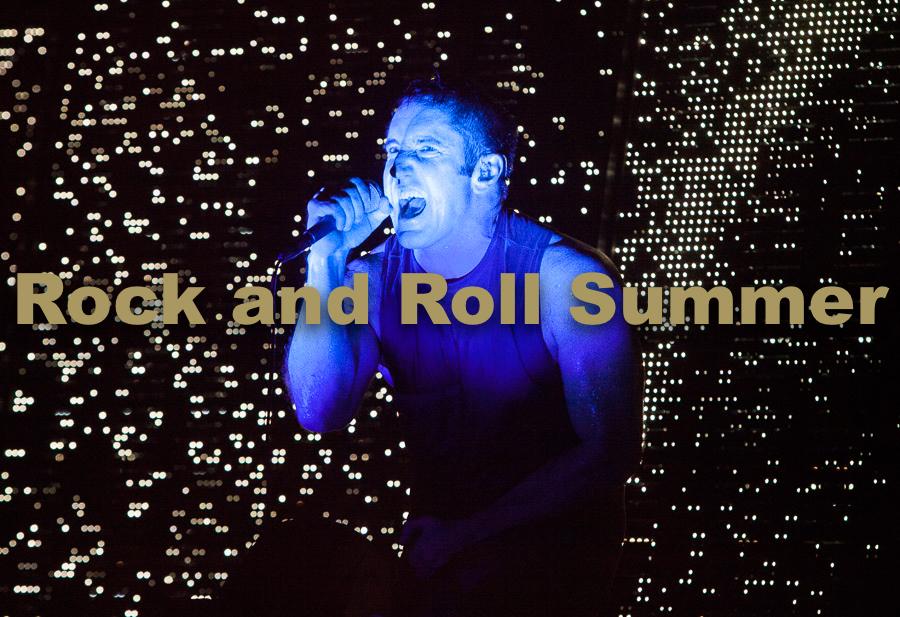 "Nine Inch Nails, Chicago, IL 2013 - Barry Brecheisen  16""x20"" $250.00 framed / $175.00 unframed"