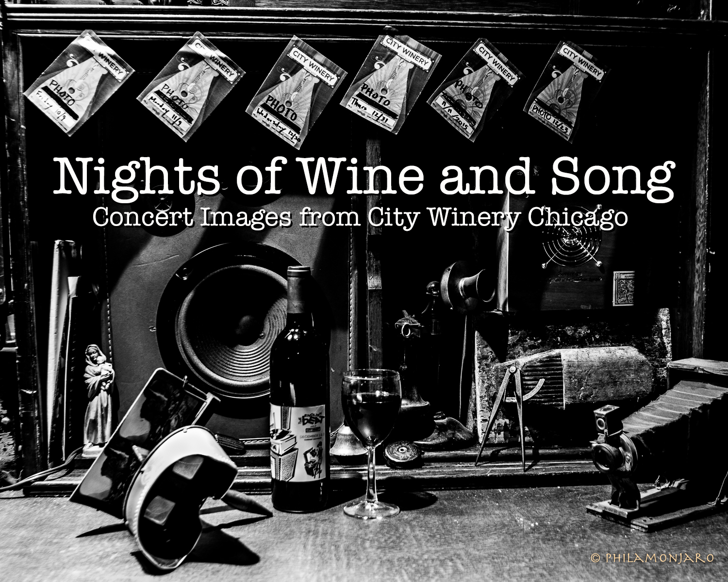CW Nights of Wine and Song Cover w text-0006 copy copy.jpg