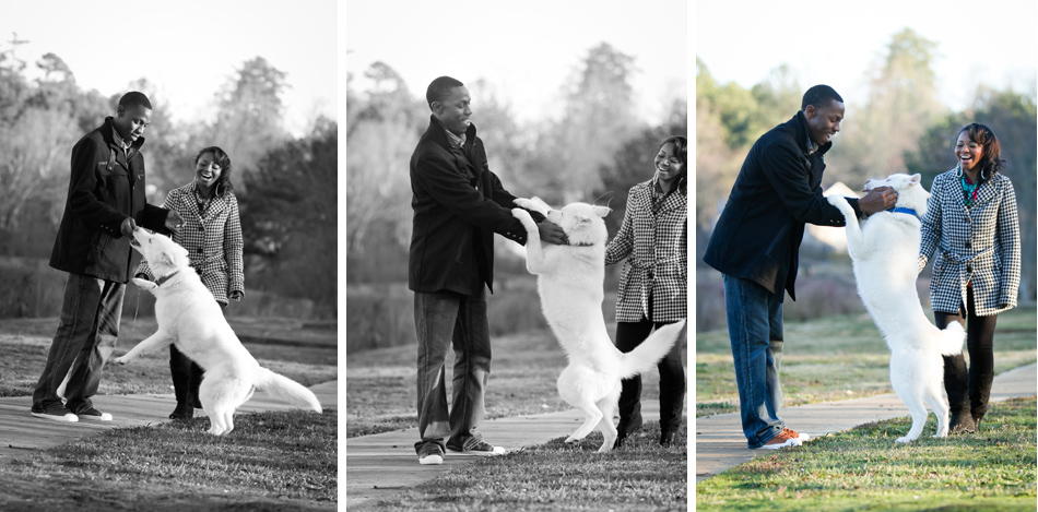 Engagement Portraits with dog