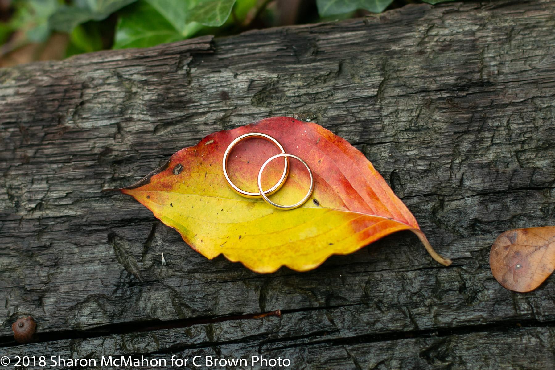 Two-groom-wedding-rings.jpg