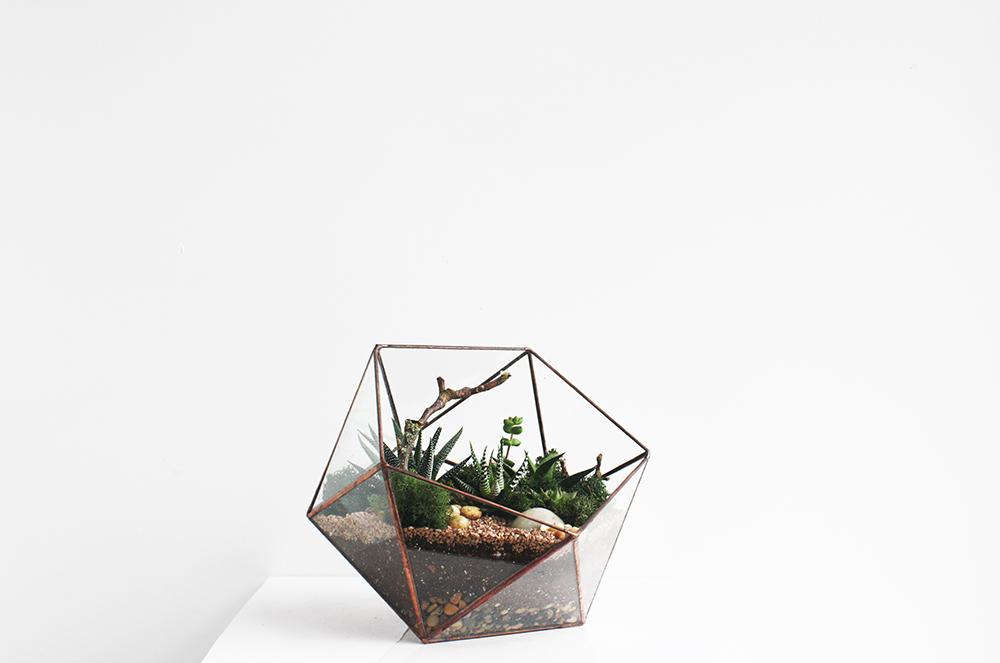 gift ideas terrarium workshop crown flora