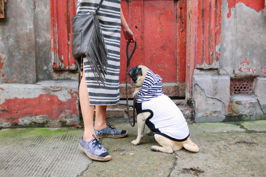 honeyidressedthepug-pug-puglife-pugswag-dog-fashion-streetstyle-hoody-spitalfields-eastlondon-london-pet-pooch-hound-midi-dress-slit-bangs-urbandecay-stripes-denim-jacket-pippolli-gap-zara-fringe-crossbody