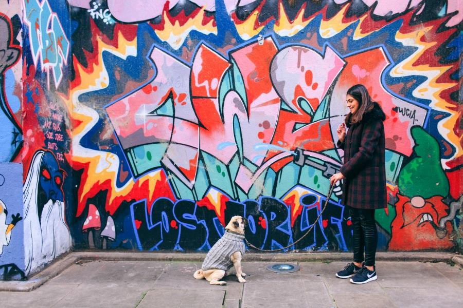 honeyidressedthepug-pug-puglife-pugswag-maxbone-london-nottinghill-potobello-market-graffiti-colours-streetart-fauxfur-fauxleather-pants-sneakers-nike-knit-jumper-dogfashion-style-streetstyle-trendy-chic-puppy-pet