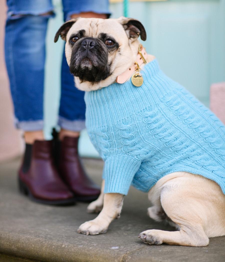 honeyidressedthepug-chelsea-london-pug-puglife-pugfashion-dog-dogfashion-humanandhound-rubyrufus-cashmere-gucci-zerouv-foundmyanimal-pastels-spring-fashion-style-streetstyle-petfashion-fashionblogger-dogtag-barksandbijoux-meandmydog-dogsinclothes