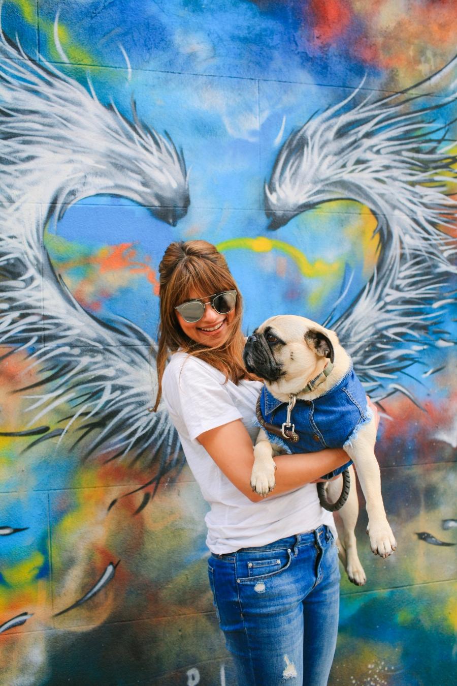 dogblog-petfashionblog-denim-pethaus-denimfordogs-streetart-london-humanandhound-coolpups-dogsinclothes-pugswag-honeyidressedthepug-shoreditch-