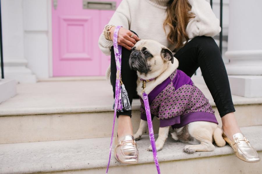 dogblog-bestdogblog-london-uk-dogfashionblog-dogsinclothes-pug-puglife-dapperdogs-dogfriendly-fashionandlifestyle-londonblogger-metallicloafers-tassellead-newyork-falltrends-humanandhound-style-twinning-nottinghill-best-streetstyle-pugswag-fashioninspiration-bestdogblog-bestdressedpug-top-awesome