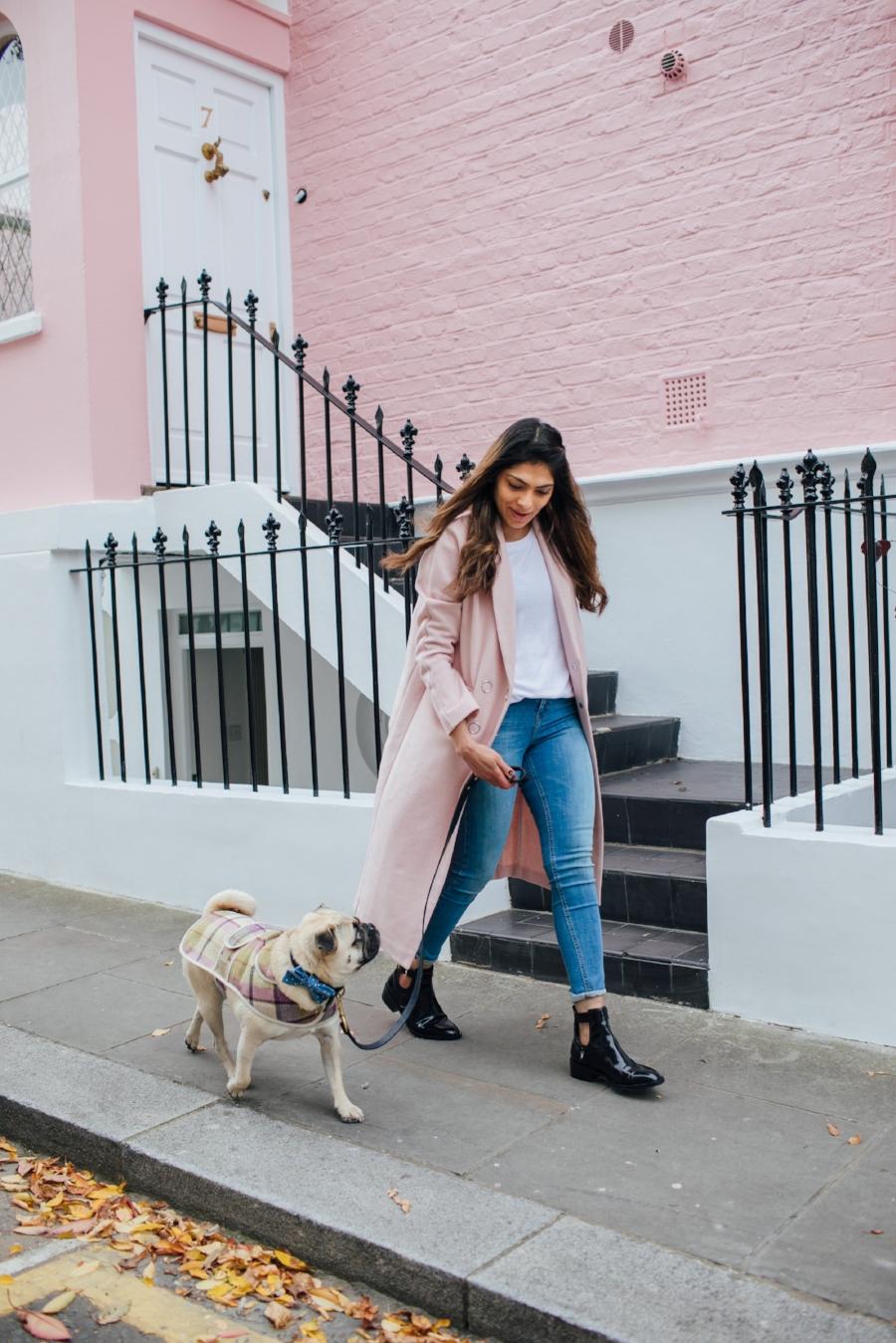 dogblog-london-bestdogbloginlondon-dogfashion-dogfashionblog-fashionandlifestyle-streetstyle-pugswag-humanandhound-pink-fallfashion-falltrends-dogsinclothes-dapperdogs-pug-puglife-bestdressedpug-fashionblogger-newyork-uk-pinkwintercoat-puglife-twinning-bestdressedpug-awesome-best-bestdogbloglondon-dogfashionlondon-coolestdogblog-cooldogs -topdogbloglondon-bestdogblog