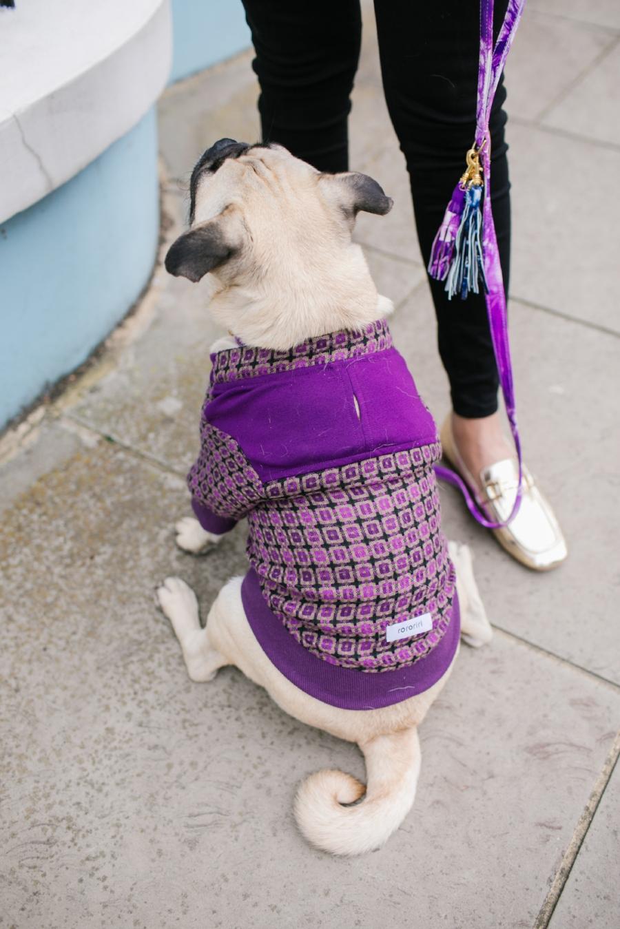 bestdogbloglondon-dogblog-london-uk-dogfashionblog-dogsinclothes-pug-puglife-dapperdogs-dogfriendly-fashionandlifestyle-londonblogger-metallicloafers-tassellead-newyork-falltrends-humanandhound-style-twinning-nottinghill-best-streetstyle-pugswag-fashioninspiration
