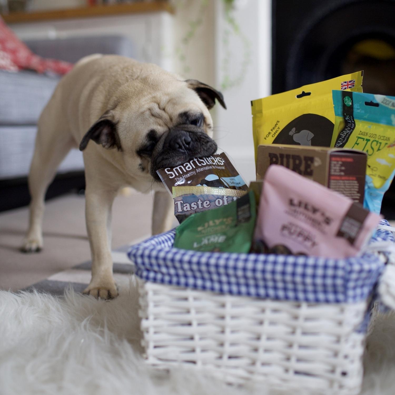Barkers-healthytreatsfordogs-dognutrition-londondogs-pug-foodfordogs-doghealth-lilyskitchen-doggytreats-delicioustreatsfordogs-nutritousdogtreats-puppy-puppytreats 1