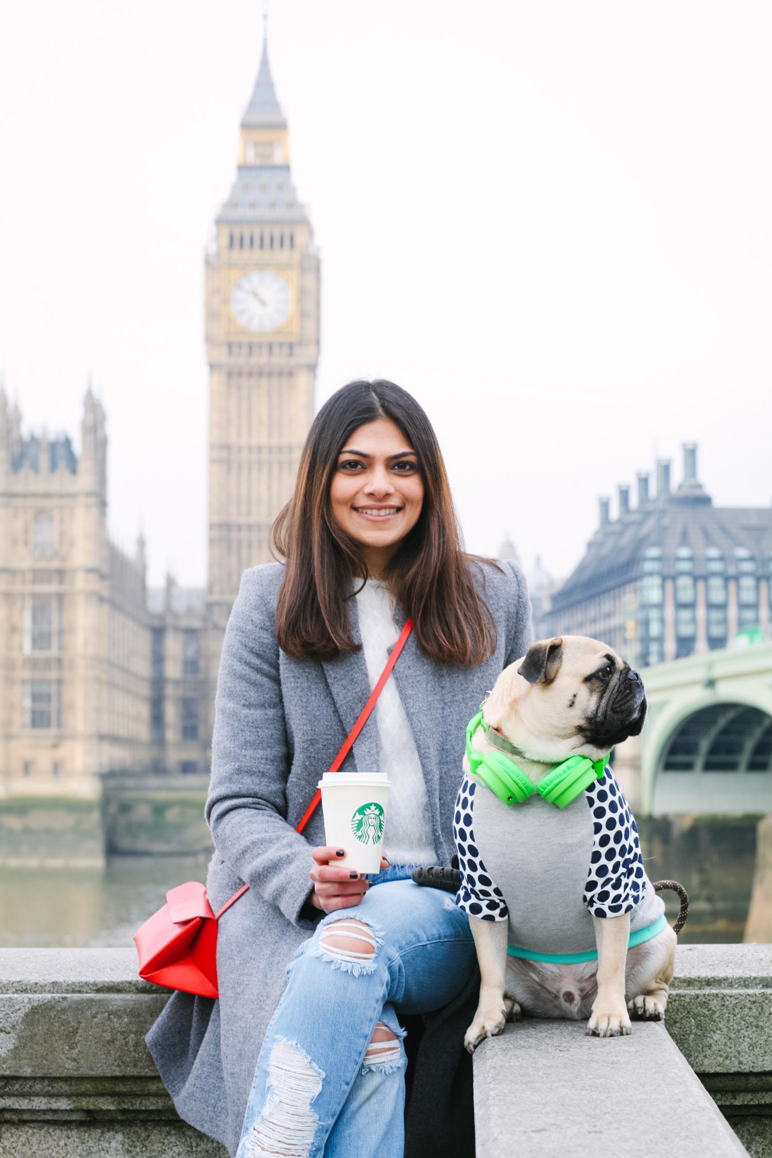 london-westminster-wesminsterabbey-honeyidressedthepug-dogfashionblog-petfashionblog-dogblog-london-uk-dogsinclothes-humanandhound-humanandhoundfashion-puglife-londonpug-bestdogblog-topdogblog-stylishdogs-instafamousdogs 5.jpg