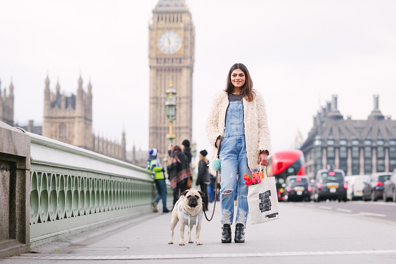 london-westminster-wesminsterabbey-honeyidressedthepug-dogfashionblog-petfashionblog-dogblog-london-uk-dogsinclothes-humanandhound-humanandhoundfashion-puglife-londonpug-bestdogblog-topdogblog-stylishdogs-instafamousdogs 4.jpg