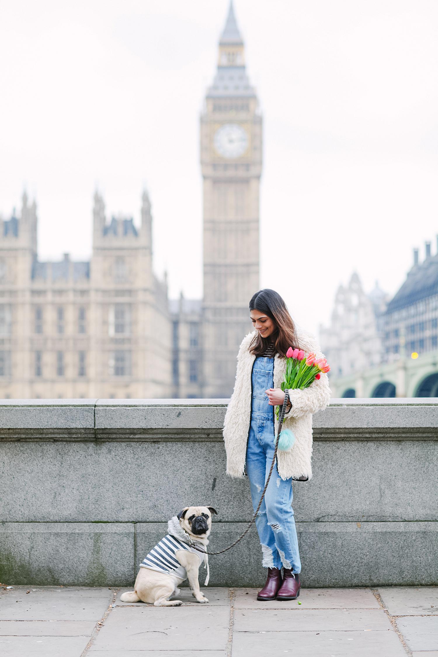 london-westminster-wesminsterabbey-honeyidressedthepug-dogfashionblog-petfashionblog-dogblog-london-uk-dogsinclothes-humanandhound-humanandhoundfashion-puglife-londonpug-bestdogblog-topdogblog-stylishdogs-instafamousdogs 3.jpg