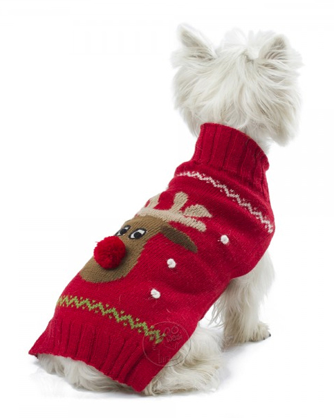holiday dog sweater-matching-dog-and-mom-holiday-sweaters10.jpg