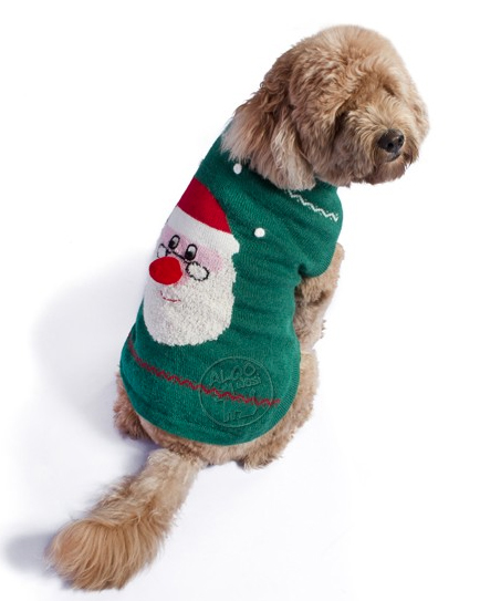 holiday dog sweater-matching-dog-and-mom-holiday-sweaters 7.jpg