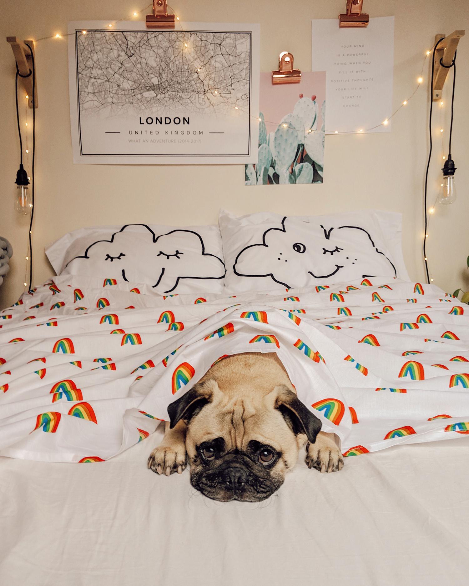 pug-puglife-dogblog-homeinspo-dogfriendly-lifestyle-newyork.jpg