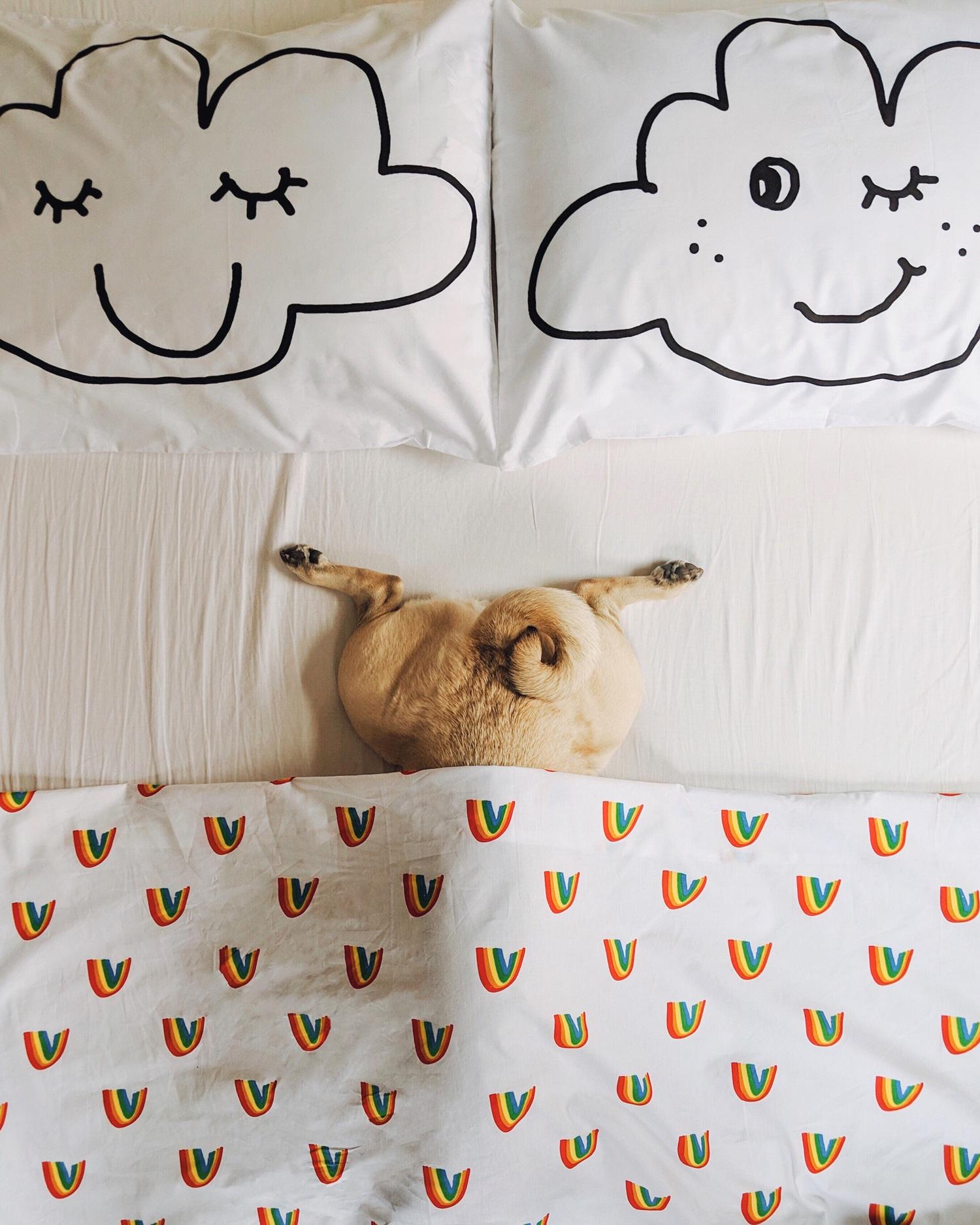 pug-puglife-dogblog-homeinspo-dogfriendly-lifestyle-newyork+2.jpg