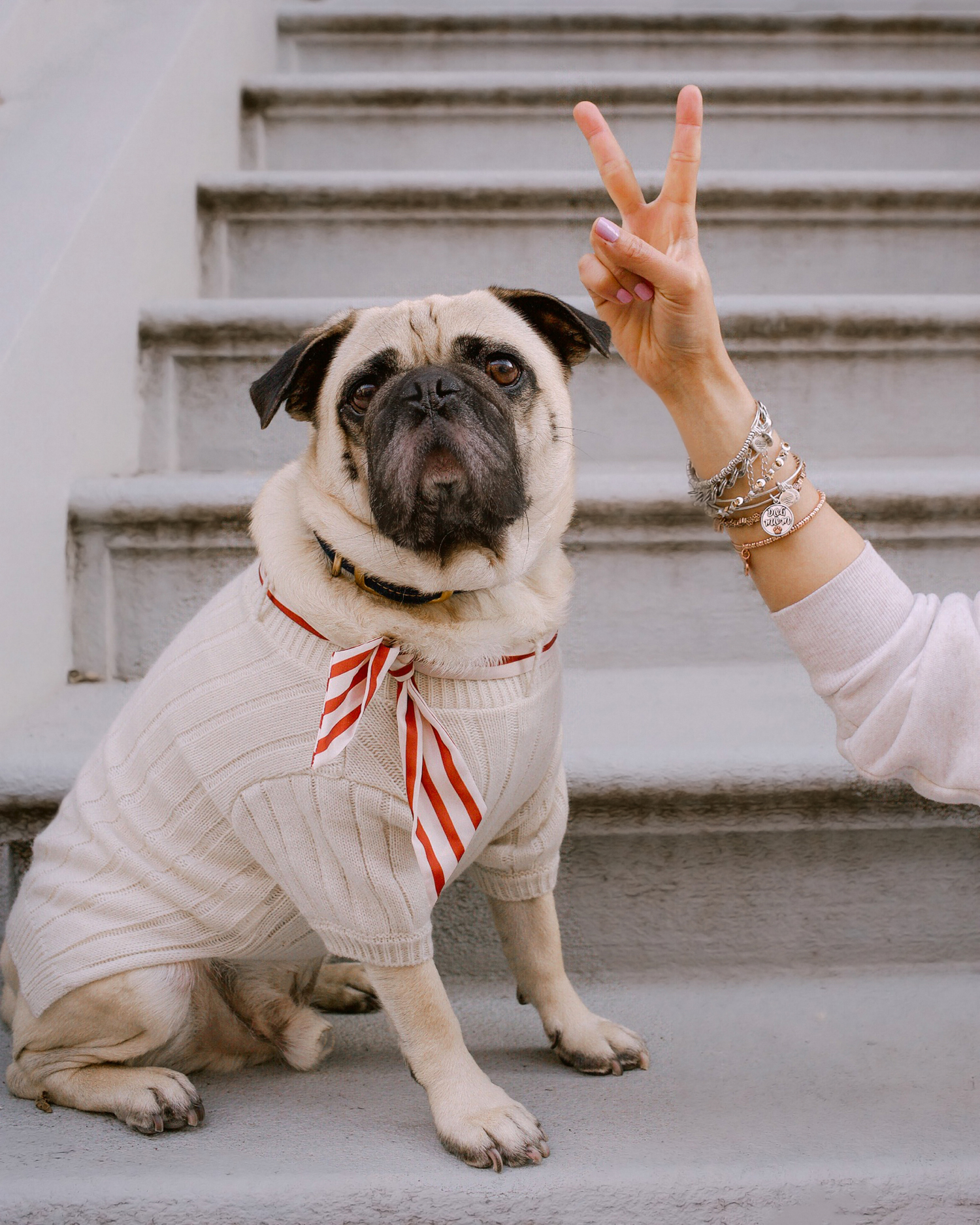honeyidressedthepug-aleaandani-motherdaycampaign-dogmom-blog-mothersday2019-dogblog-newyorkdogs-nycdogmom-twinningwithmydog 10.jpg