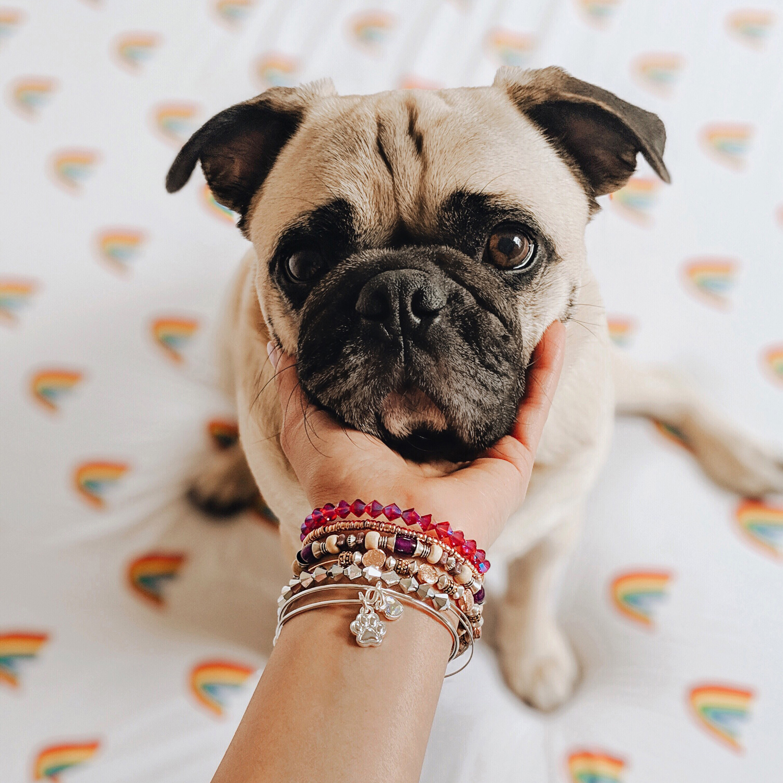 honeyidressedthepug-aleaandani-motherdaycampaign-dogmom-blog-mothersday2019-dogblog-newyorkdogs-nycdogmom-twinningwithmydog 2.jpg