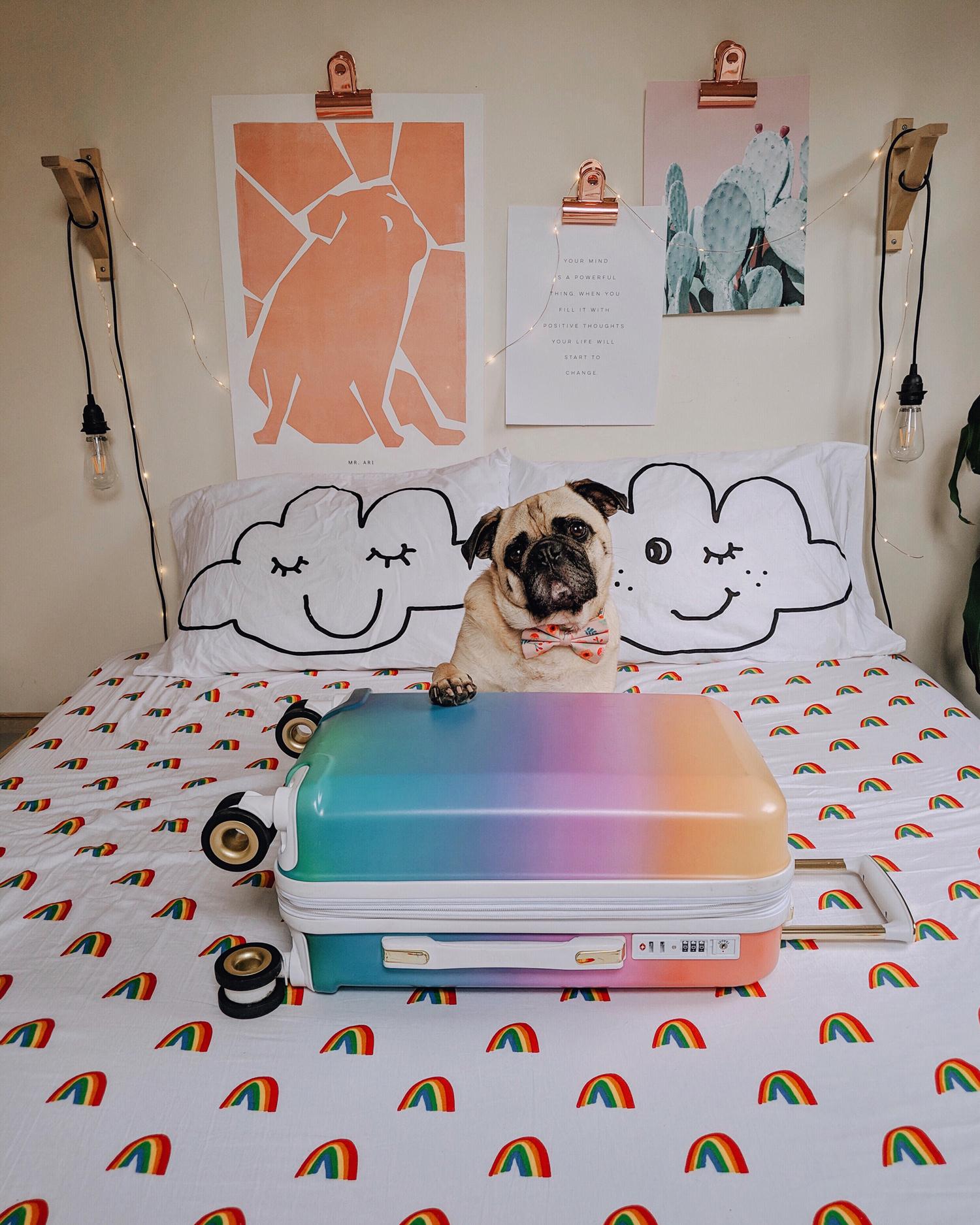 Portland-dogfriendly-travel-travelwithyourdog-woodenshoetulipfestival-2019-dogstraveling-dogblog-pug-dogmomblog-newyorkblog-visitportland31.jpg