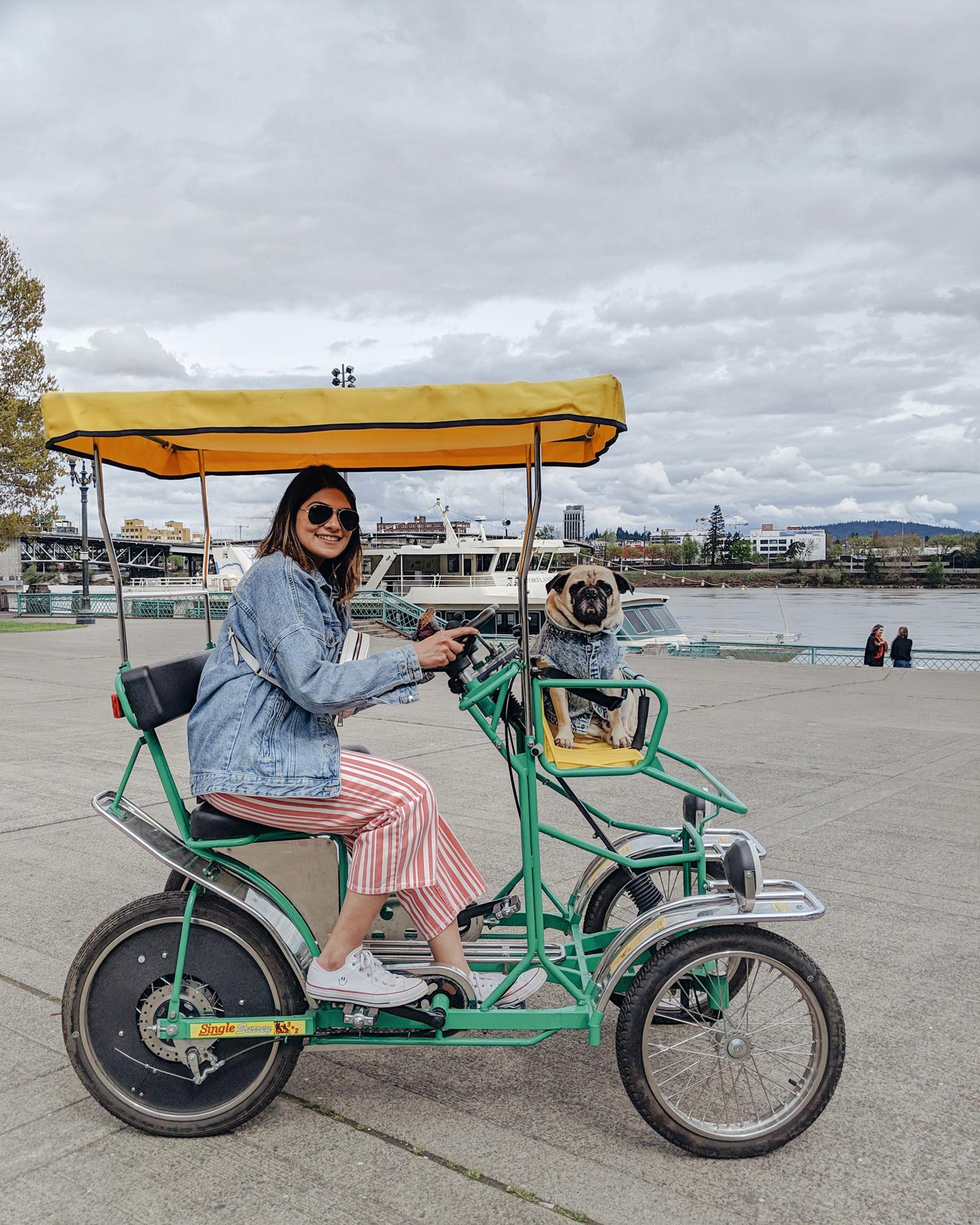 Portland-dogfriendly-travel-travelwithyourdog-woodenshoetulipfestival-2019-dogstraveling-dogblog-pug-dogmomblog-newyorkblog-visitportland21.jpg