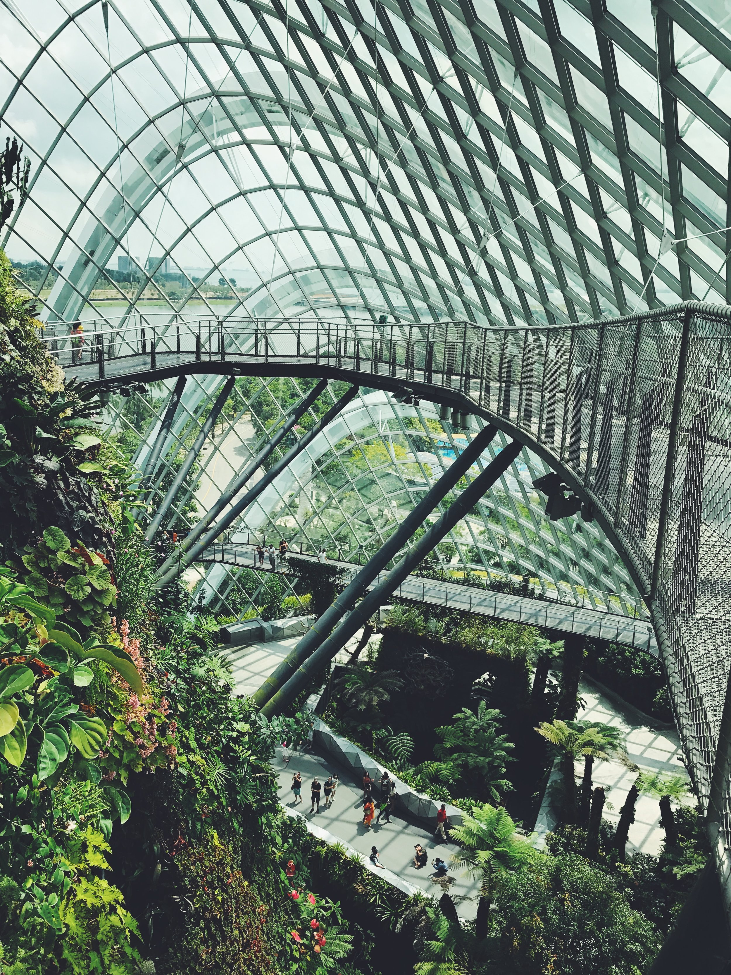 The Cloud Dome in Gardens by the Bay - after (F2 filter)