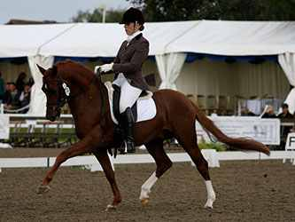 le-chiffre-nationals-12-trot-by-camille-peters.jpg