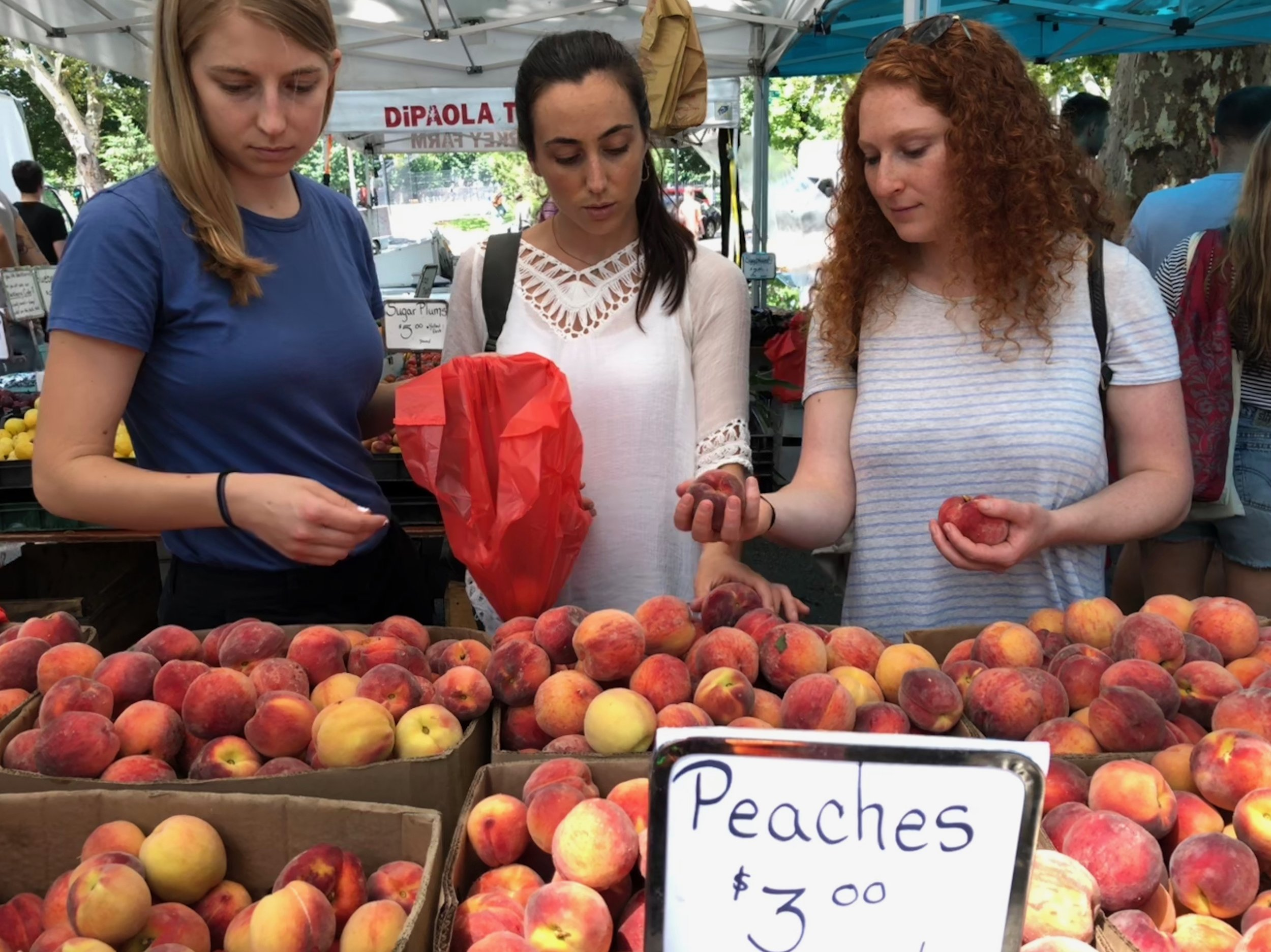 Legitimately candid shot of three dietitians buying peaches at a farmer's market. Full disclosure: we blended them into a cocktail later that day.