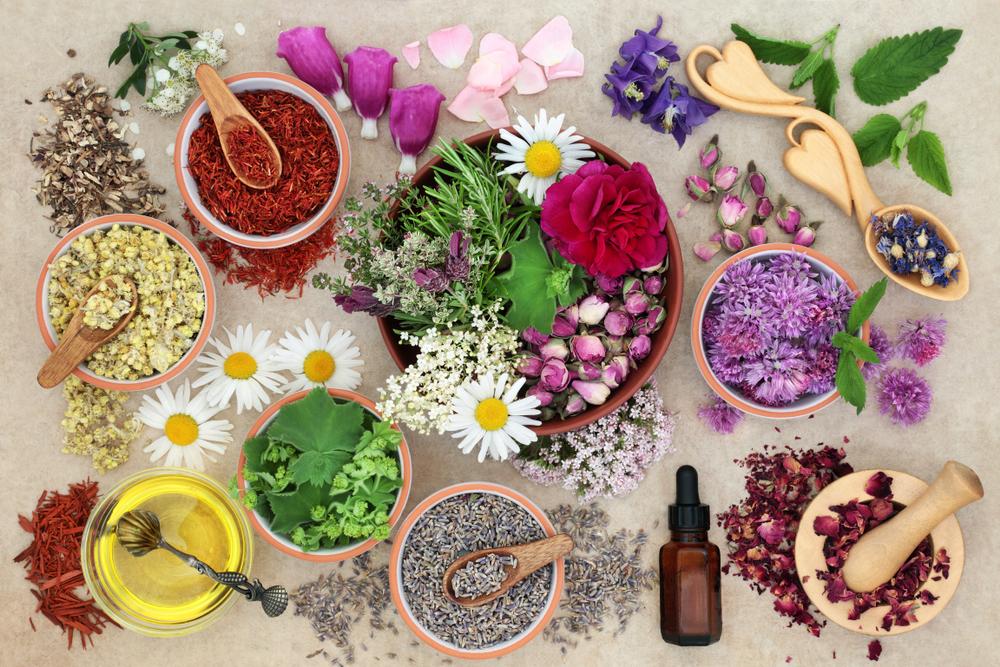 Herbal Medicine Ayurveda (medium).jpg
