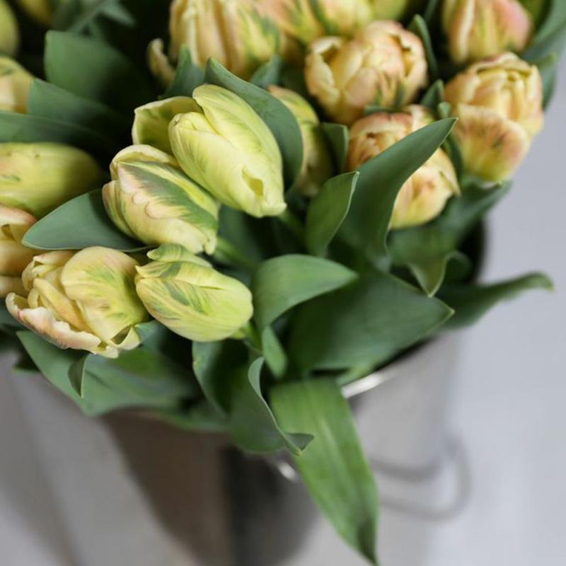 HILARY HORVATH FLOWERS- PORTLAND FLOWER DELIVERY- ALDER & CO