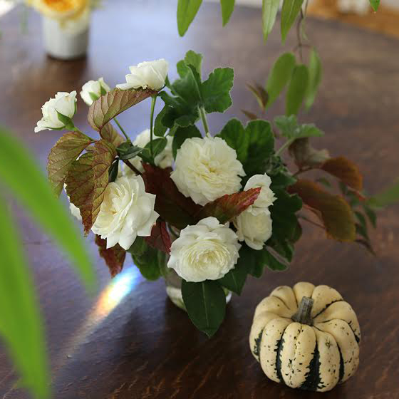 hilary_horvath_flowes_thanksgiving_3