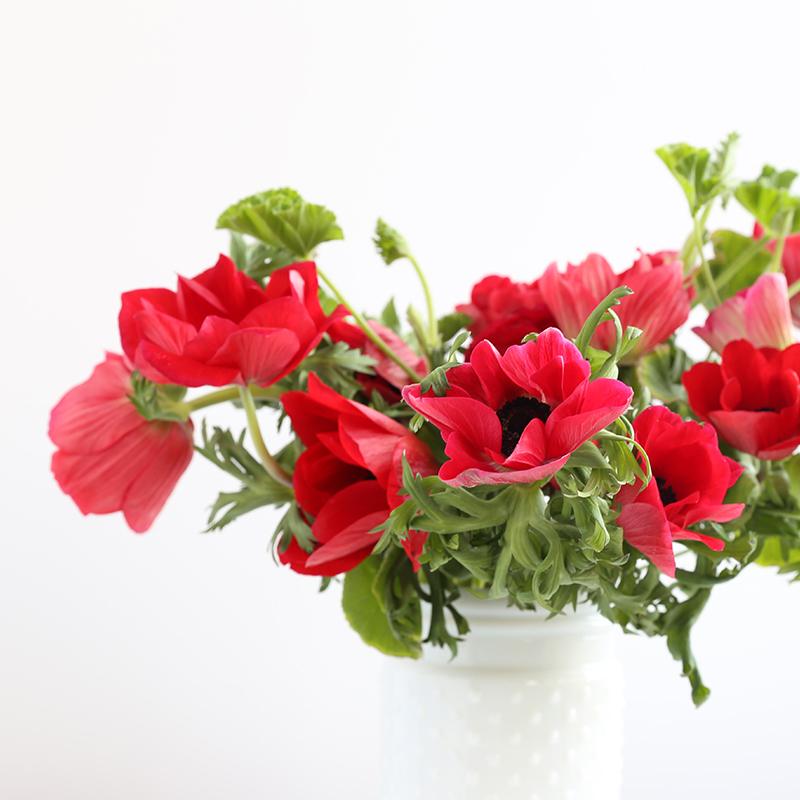 hilaryhorvathflowers_valentinefloristportland_alderandco