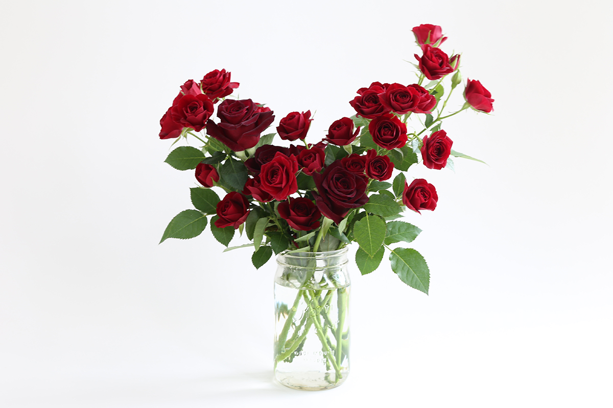 hilary_horvath_flowers_valentine_delivery