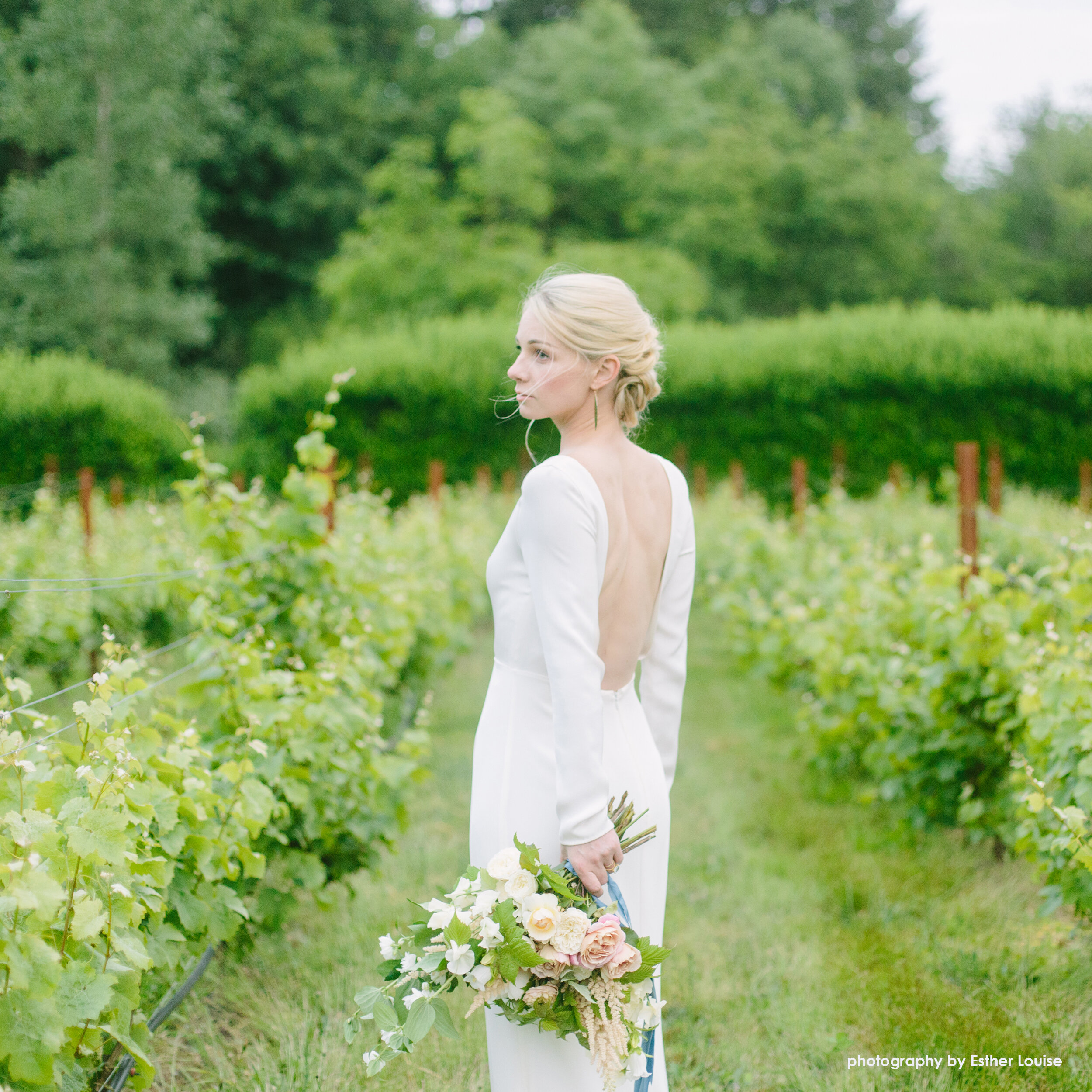 vineyard bouquet wedding hilary horvath flowers.jpg
