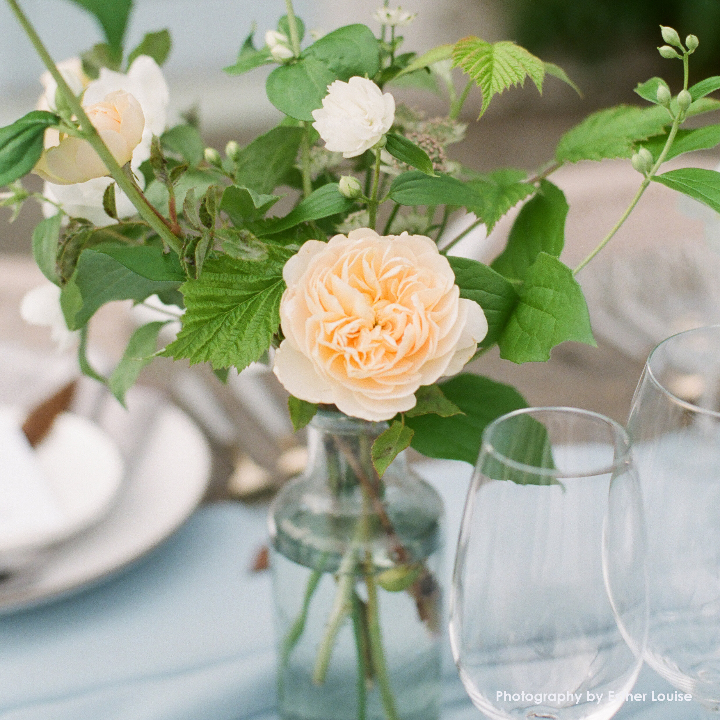 Bud vase wedding hilary horvath flowers.jpg