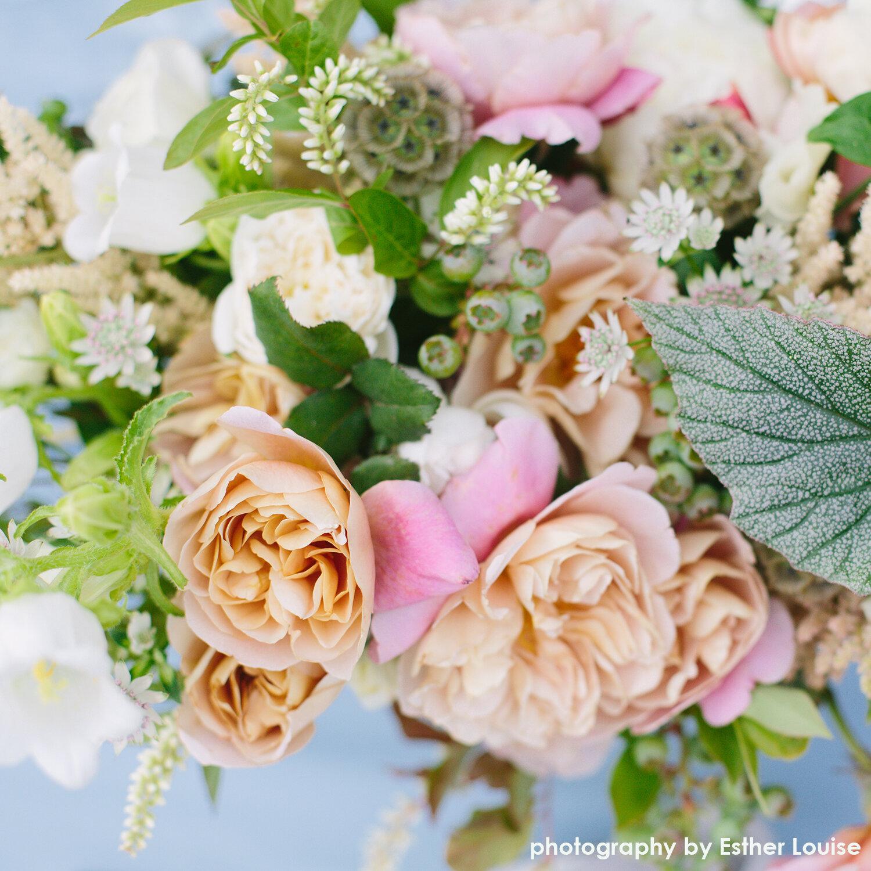garden-rose-blueberry-centerpiece-hilary-horvath-flowers.jpg