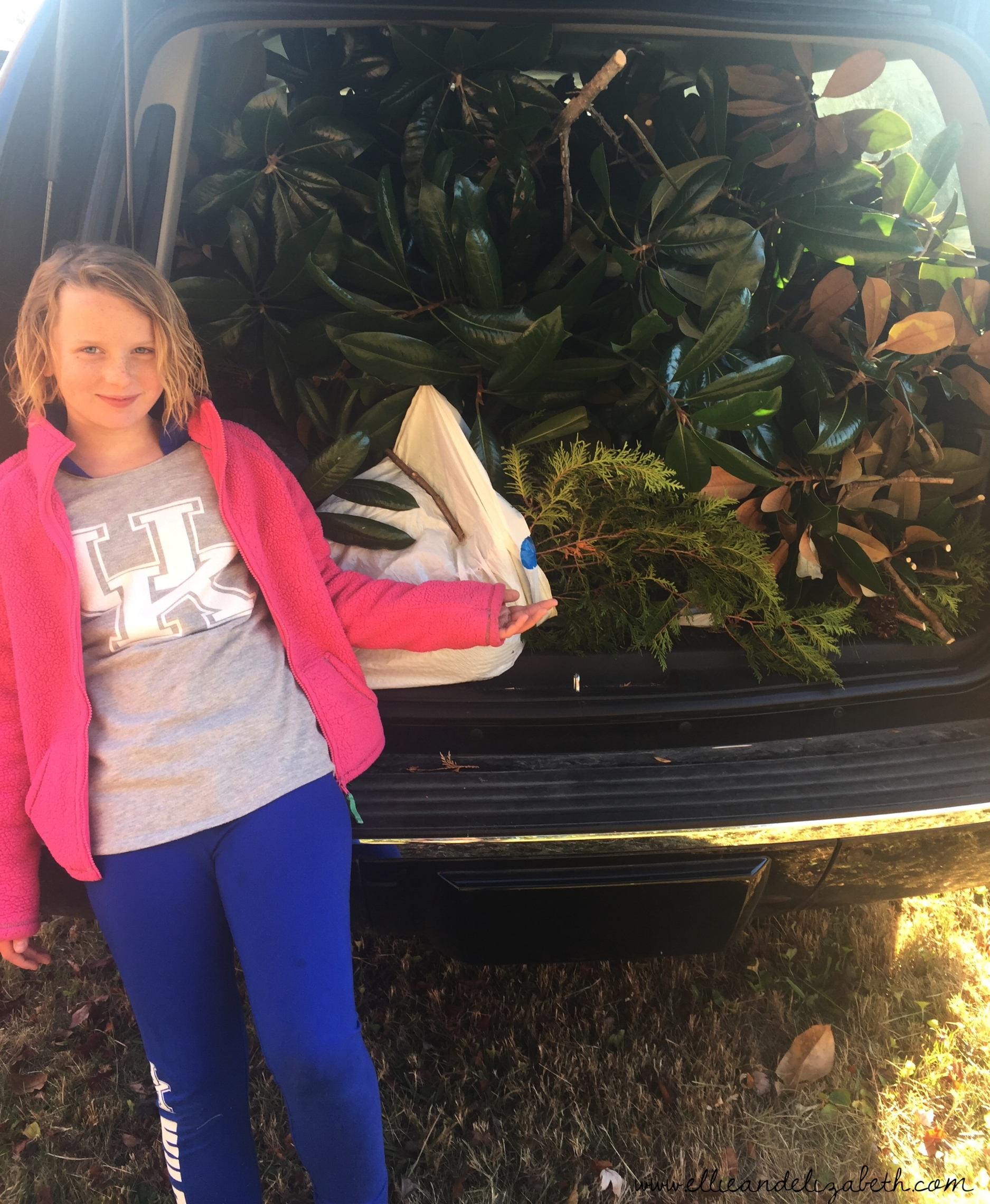 I'm not saying anything about the greenery sticking out of the bottom of the magnolia. I'm just saying that if you see it out and about in a field where it is growing in the wild, it may end up in this car. The niece is an innocent bystander.
