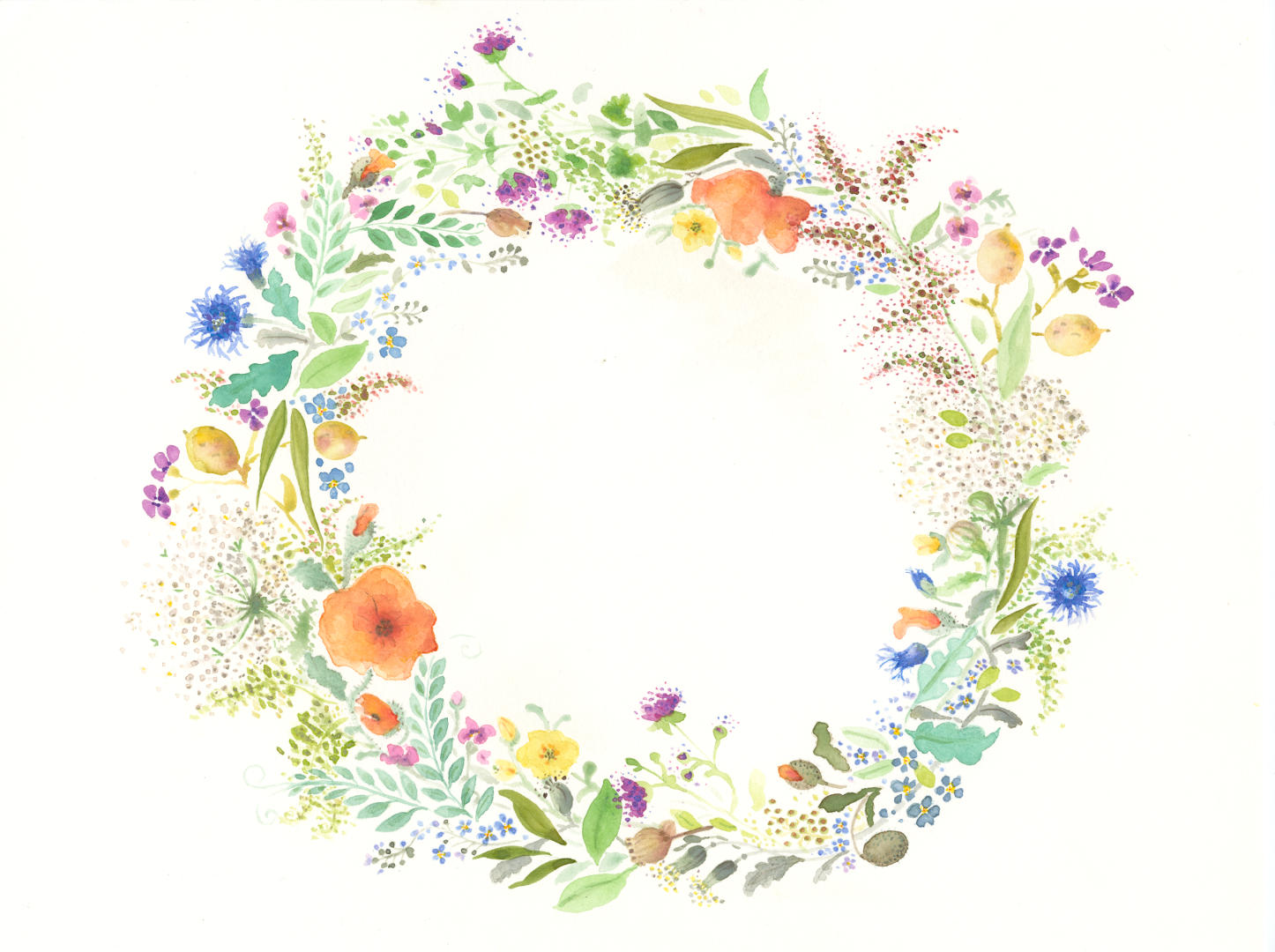 Wild Flowers_1_1800.jpg