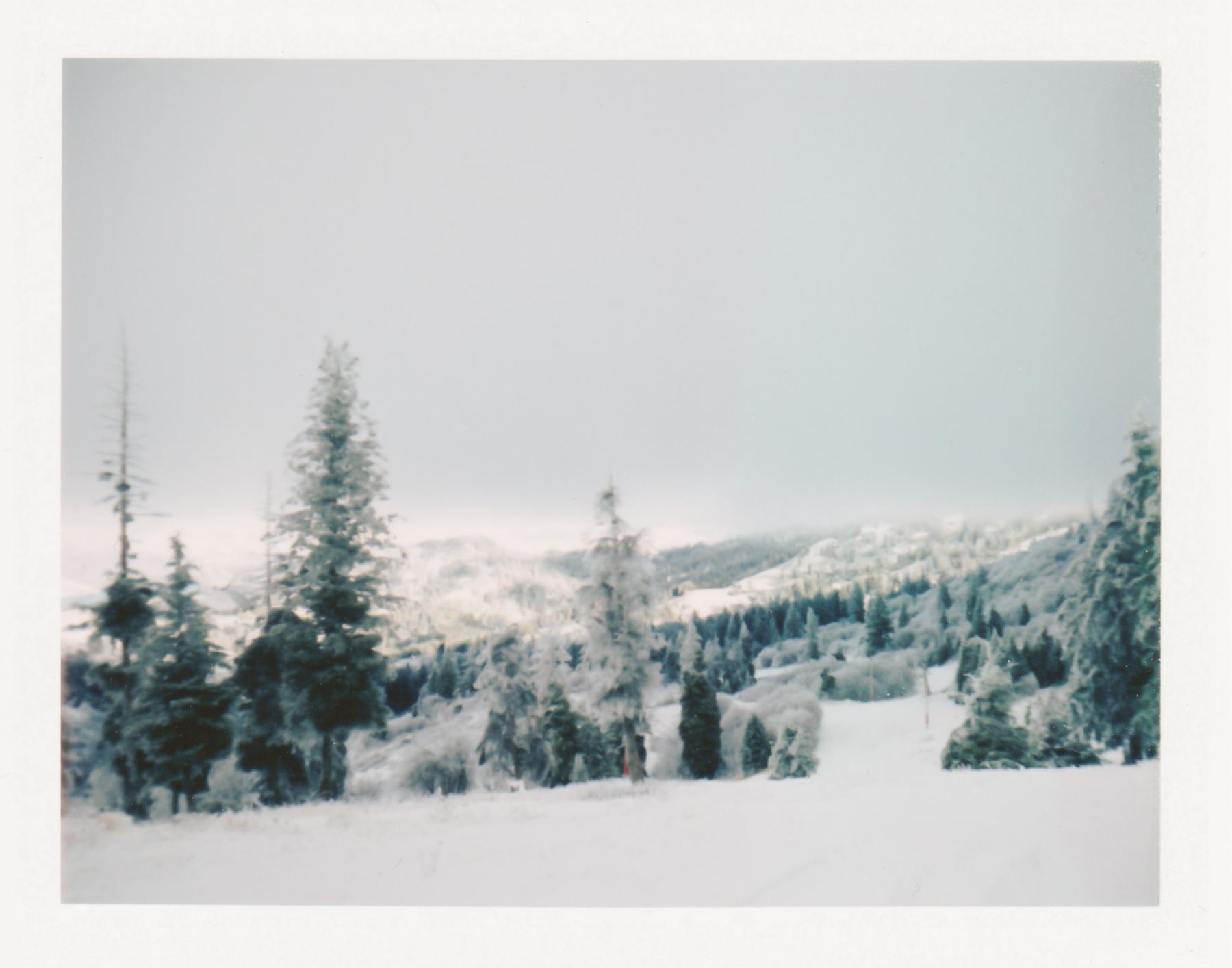 LandCamera2.jpg