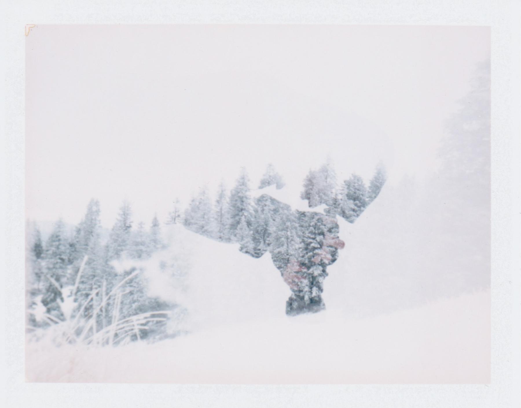 LandCamera3.jpg