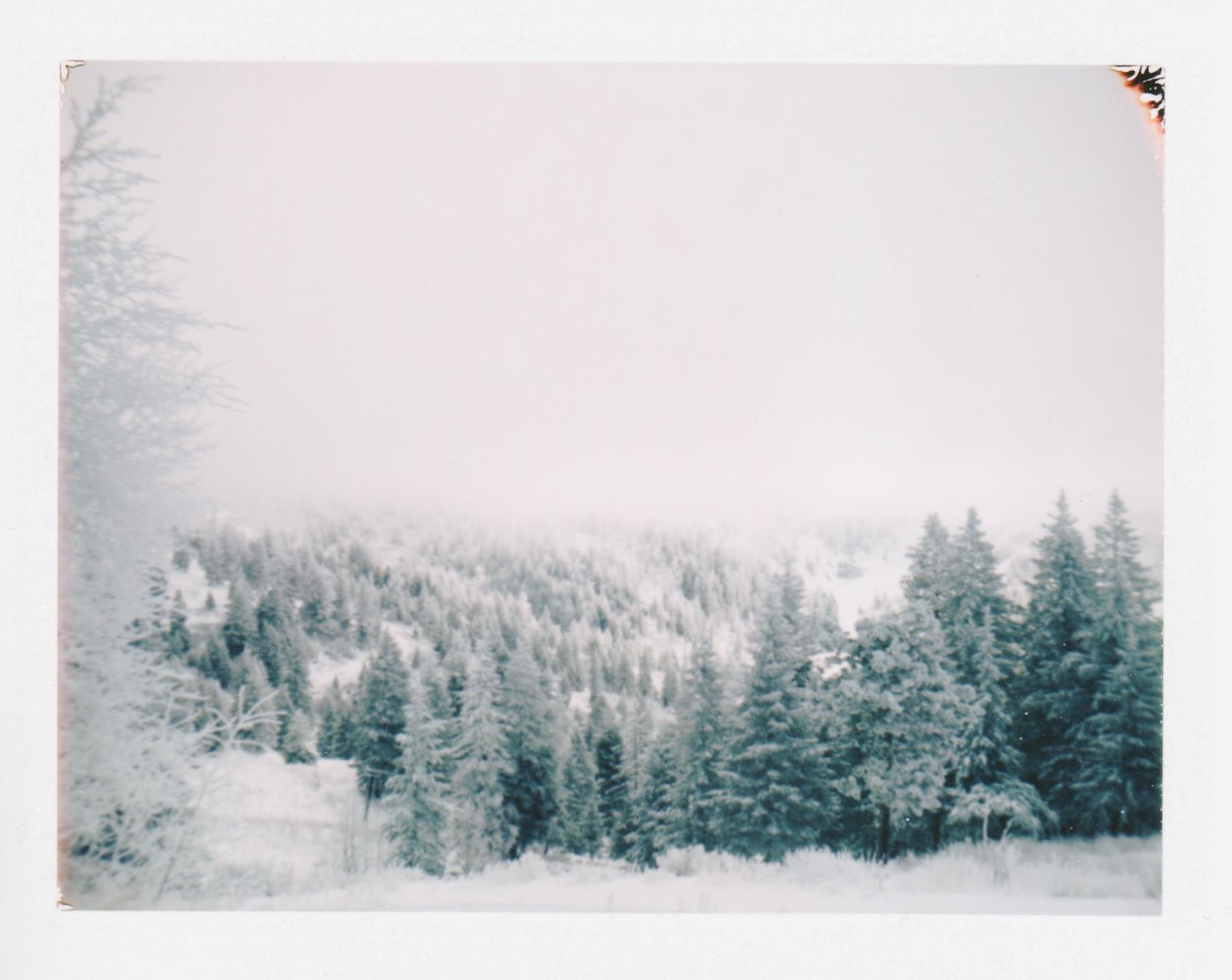 LandCamera1.jpg
