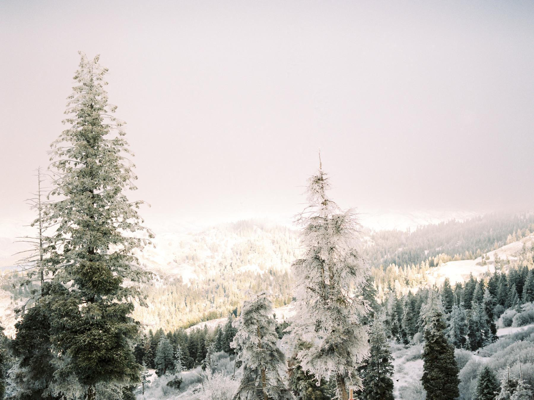 Ben+Joella | Winter on Film 1.jpg