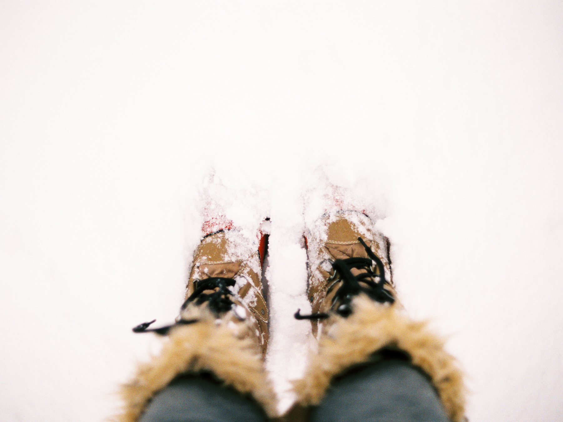 Ben+Joella | Winter on Film 6.jpg