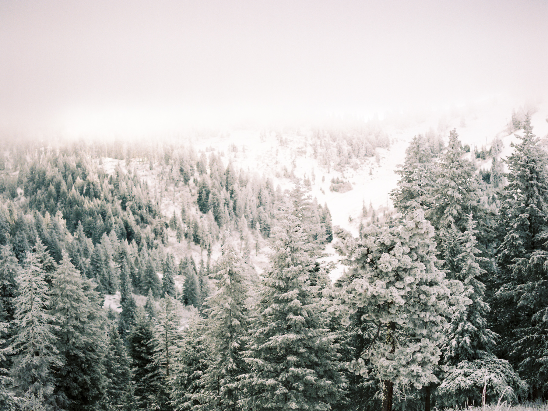 Ben+Joella | Winter on Film 9.jpg