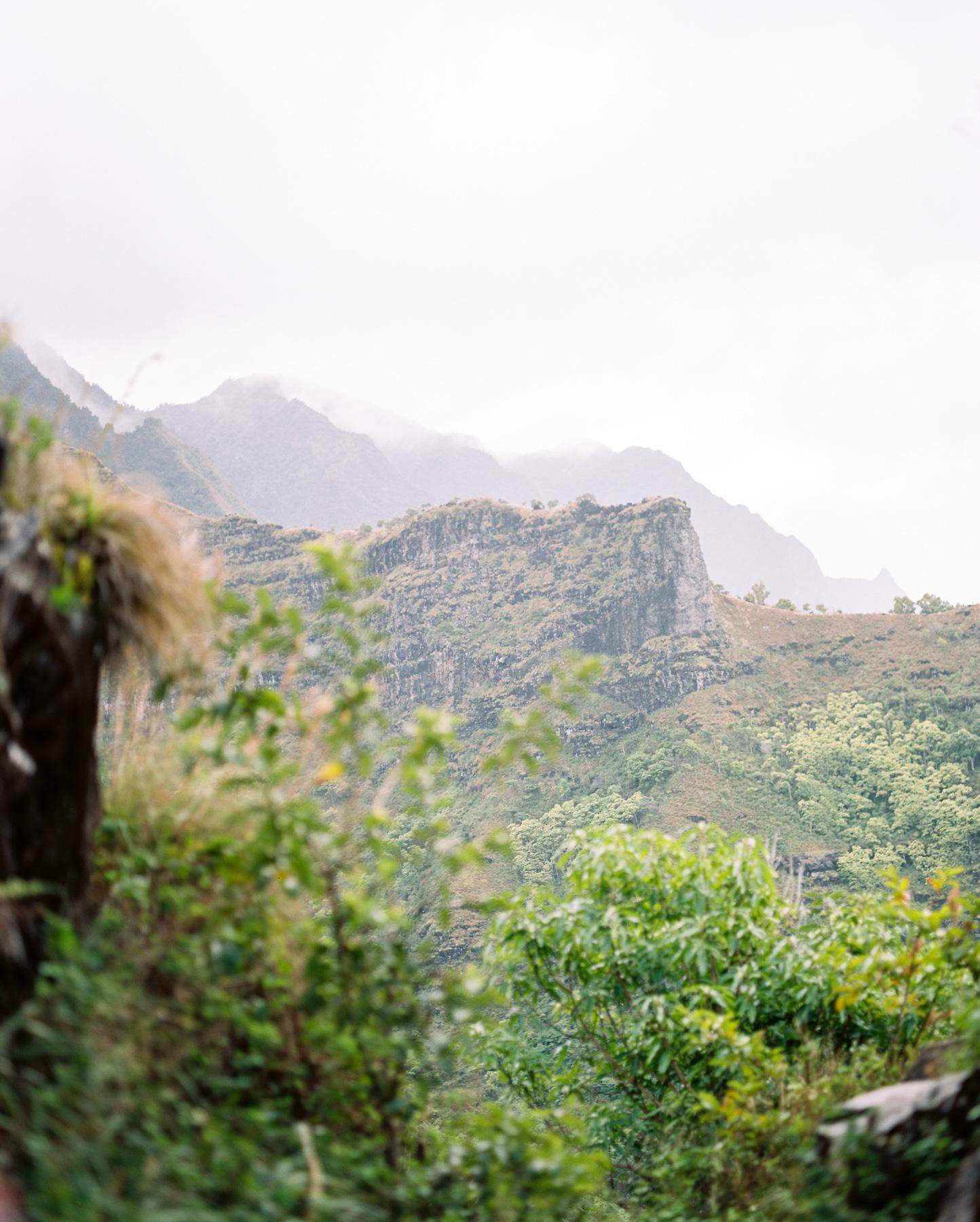 Ben+Joella | Kauai on Film 02.jpg