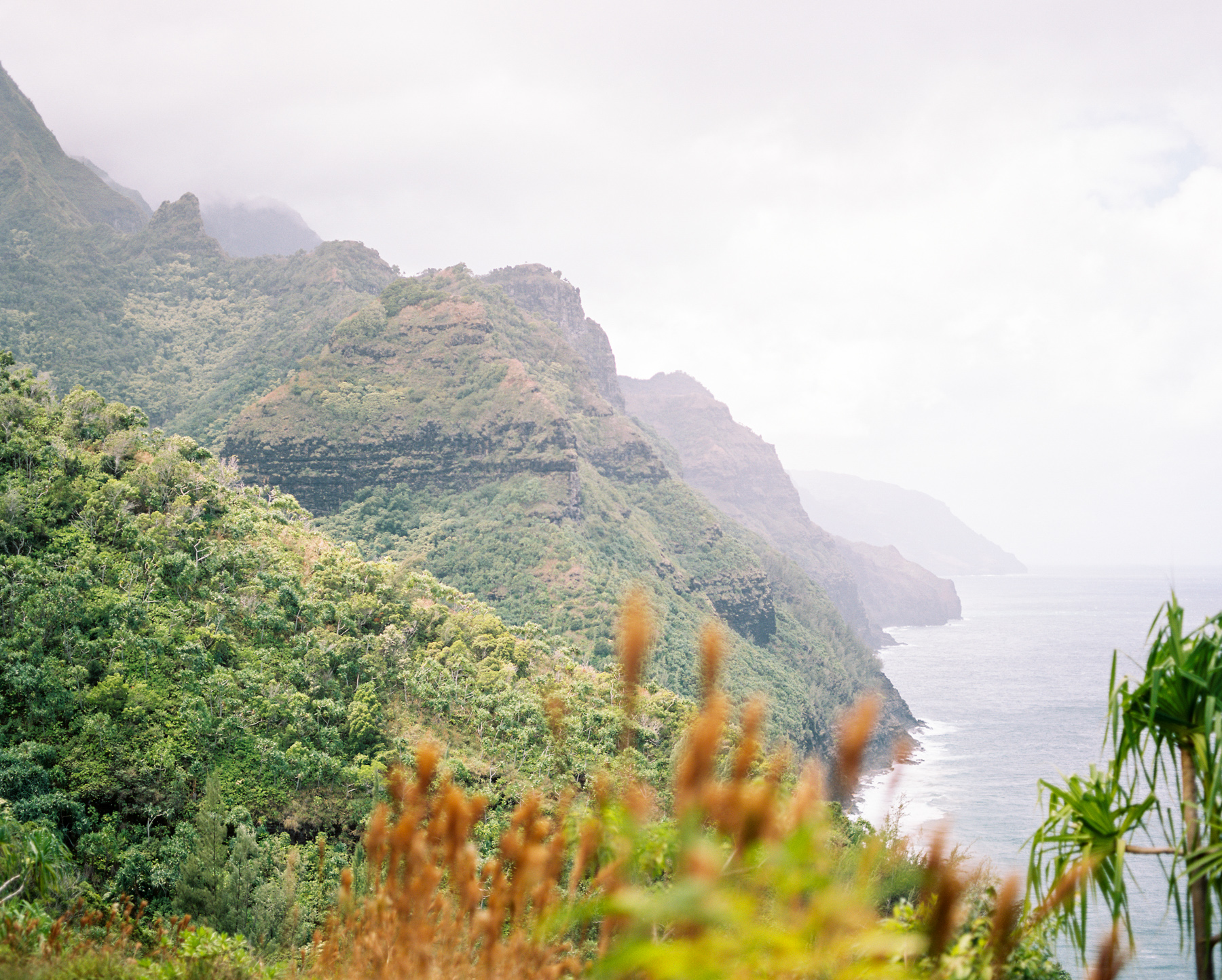 Ben+Joella | Kauai on Film 01.jpg