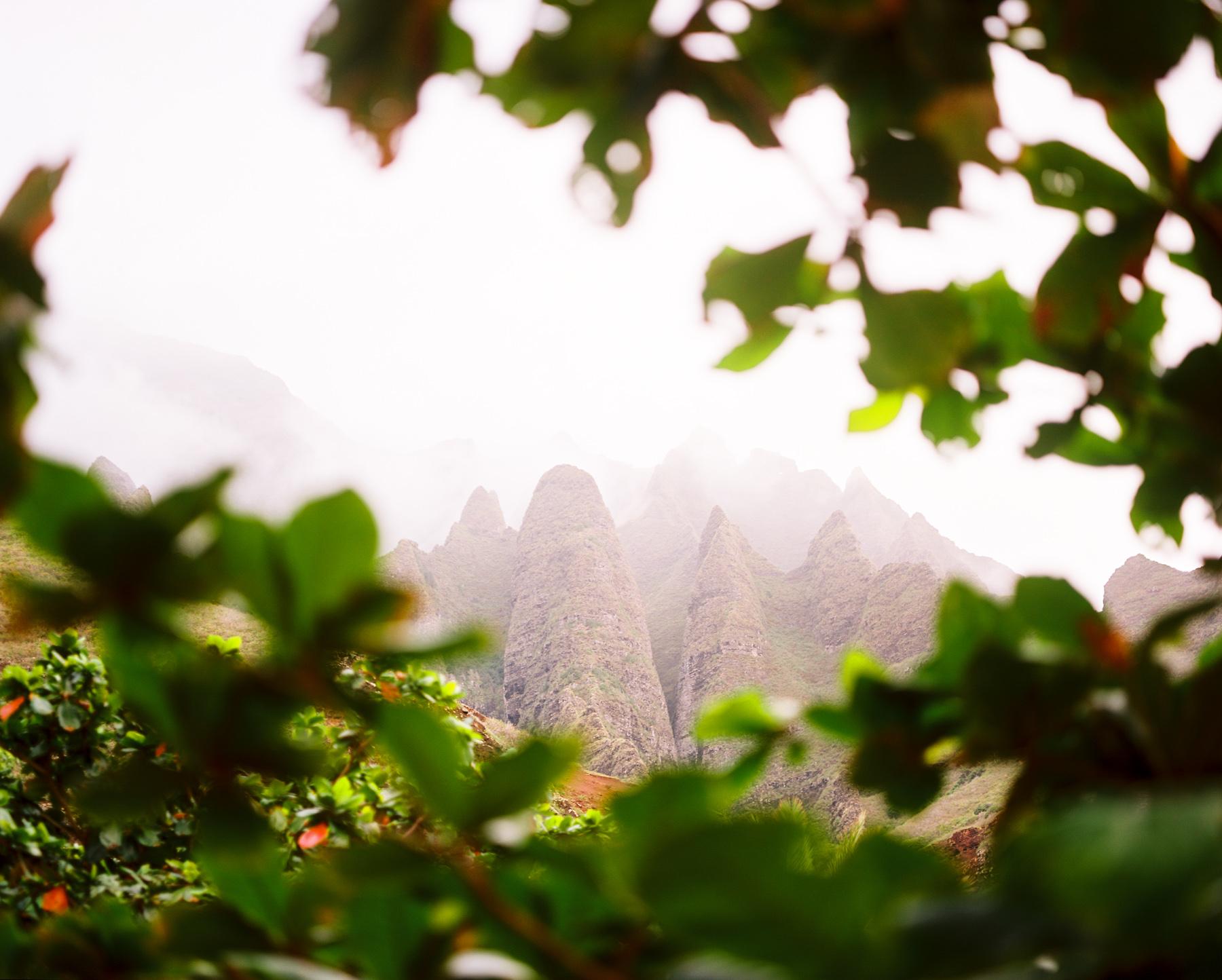 Ben+Joella | Kauai on Film 15.jpg