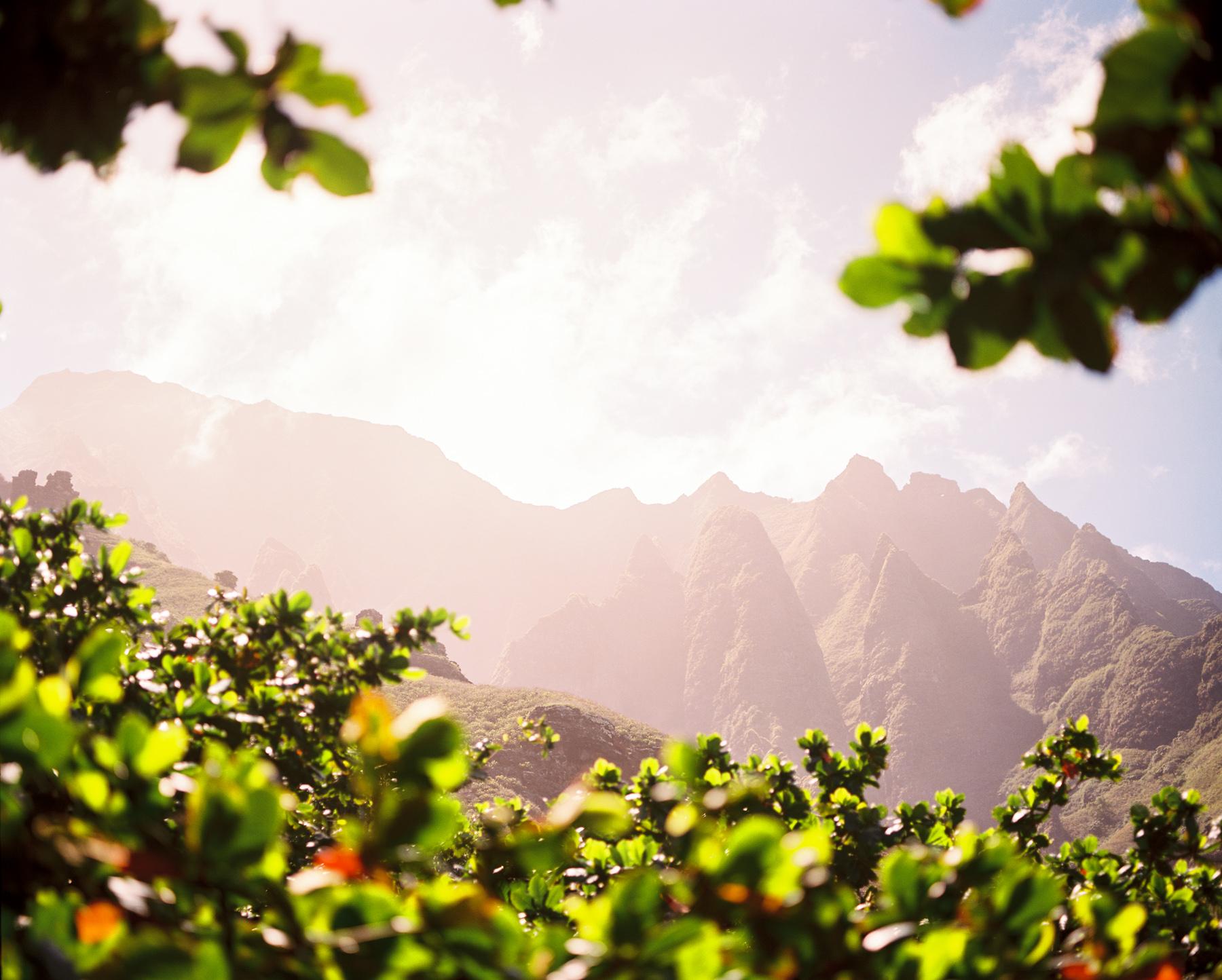 Ben+Joella | Kauai on Film 18.jpg
