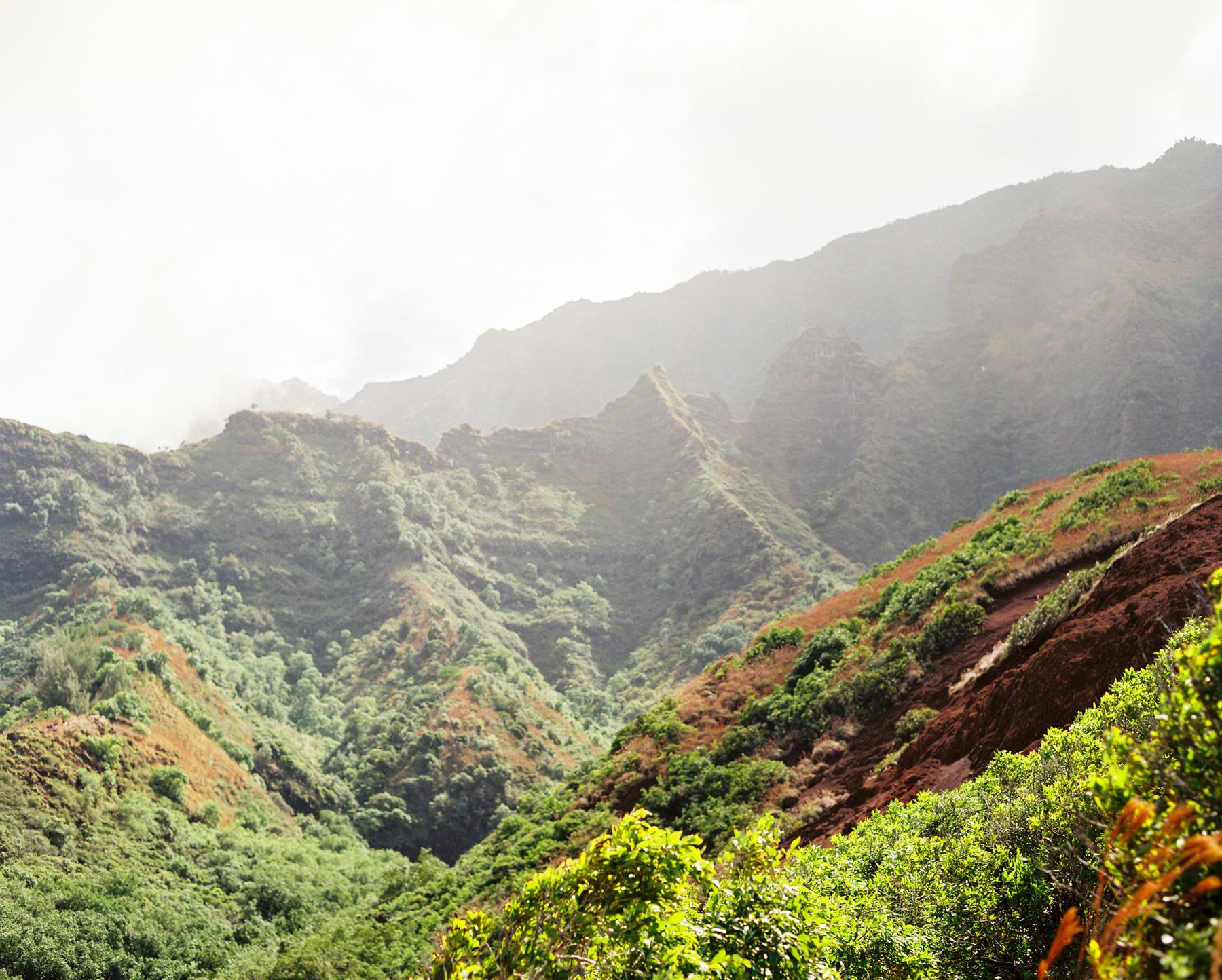 Ben+Joella | Kauai on Film 27.jpg