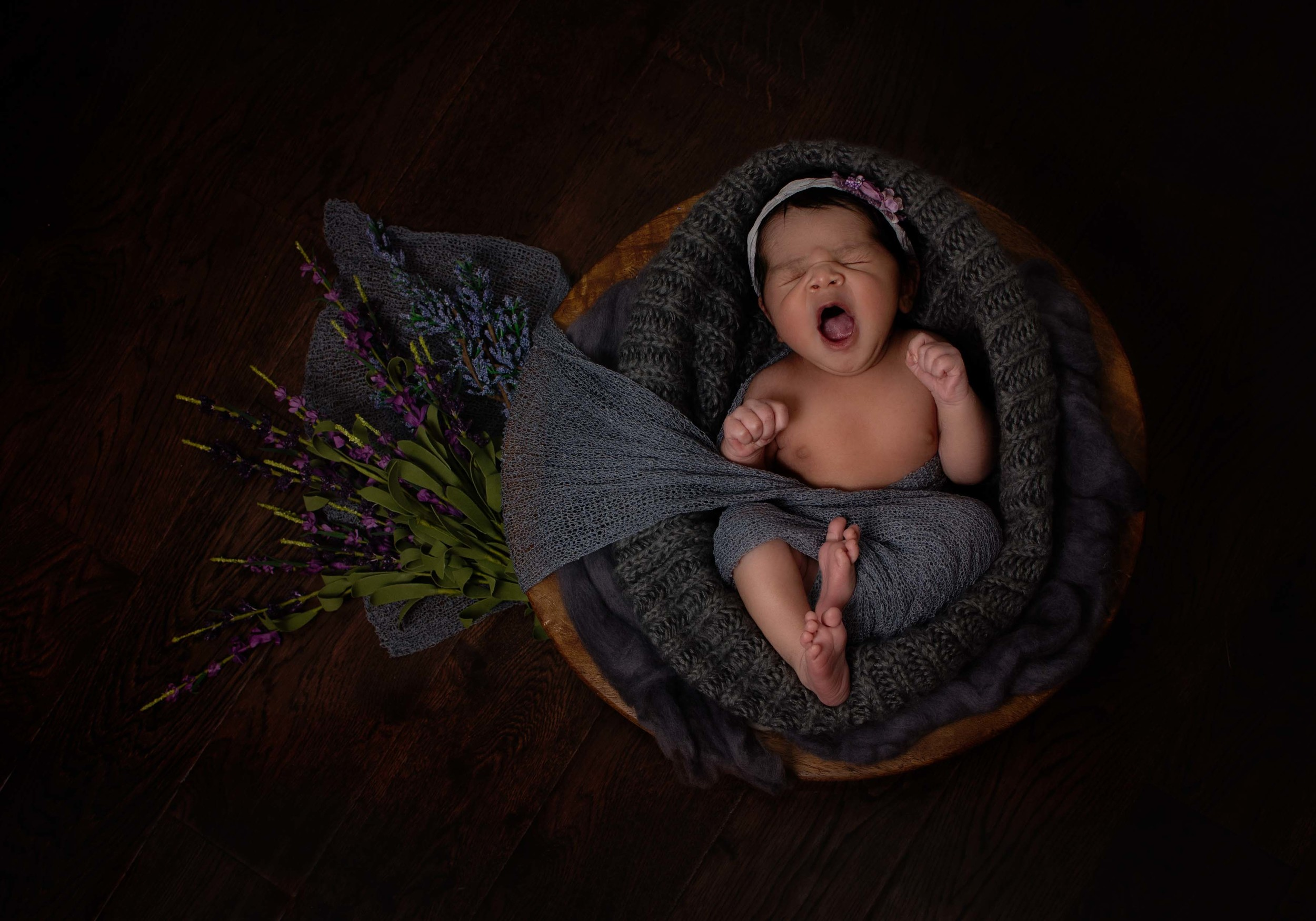 frederick new born photographer