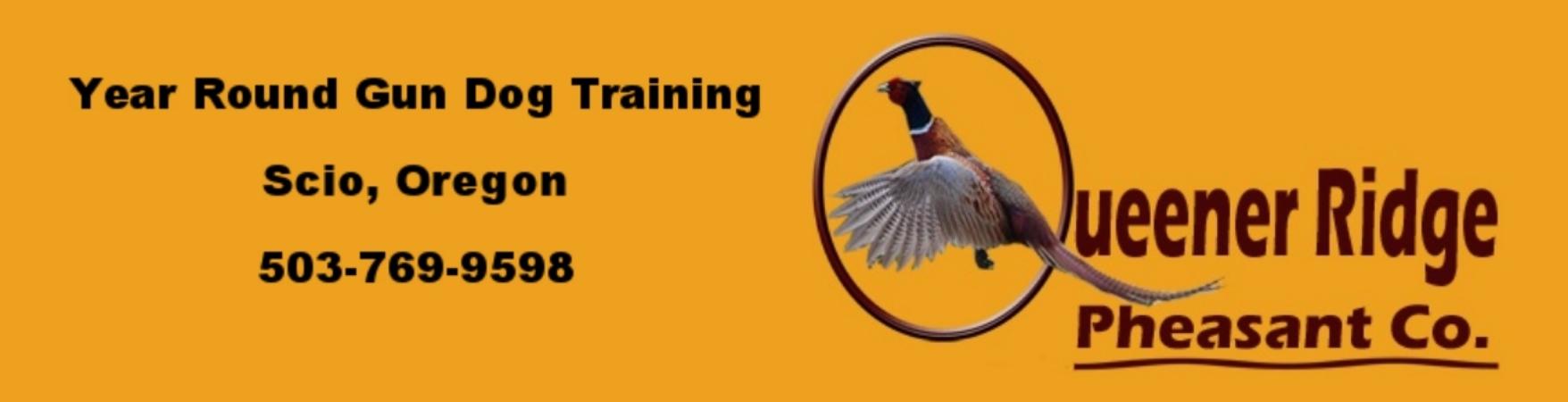Queener Ridge Pheasants